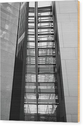 Wood Print featuring the photograph Library Skyway by Rona Black