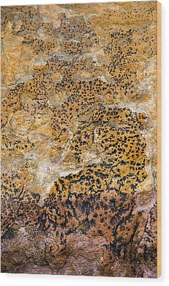 Wood Print featuring the photograph Lichen Abstract, Bhimbetka, 2016 by Hitendra SINKAR