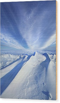 Wood Print featuring the photograph Life Below Zero by Phil Koch