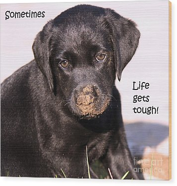 Life Gets Tough Wood Print by Cathy  Beharriell
