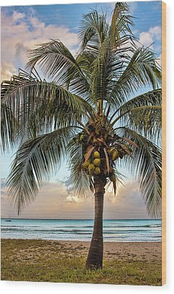 Life Is A Beach Wood Print by Marcia Colelli