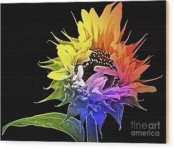 Life Is Like A Rainbow ... Wood Print