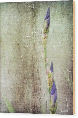 Life Of A Bud Wood Print by Eena Bo