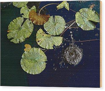 Life Of A Lily Pad 3 Wood Print by Nicholas J Mast