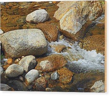 Life Of The Riverbed Wood Print by Lynda Lehmann