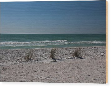 Wood Print featuring the photograph Life's A Beach by Michiale Schneider