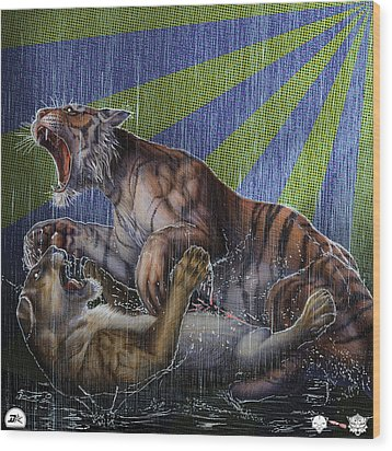 Liger  Release Wood Print by David Starr