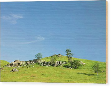 Wood Print featuring the photograph Light And Shadows - Spring In Central California by Ram Vasudev
