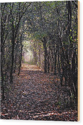 Light At The End Of The Path Wood Print by Eva Thomas