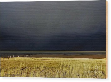 Light Before The Storm Wood Print by Michele Penner