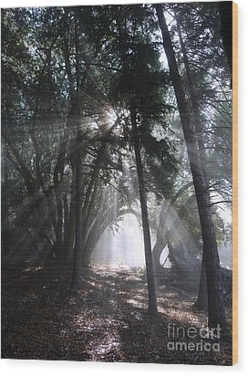 Light Cathedral Wood Print by JoAnn SkyWatcher
