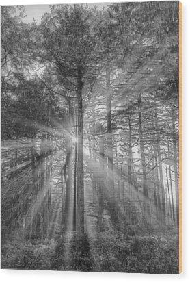 Light Wood Print by Naman Imagery