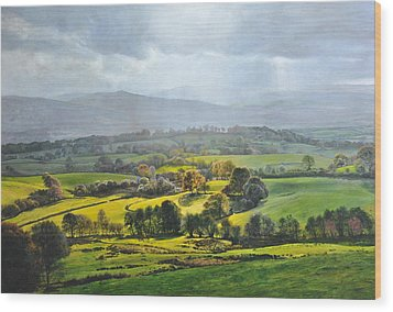Wood Print featuring the painting Light In The Valley At Rhug. by Harry Robertson