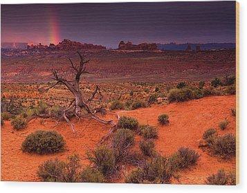 Light Of The Desert Wood Print
