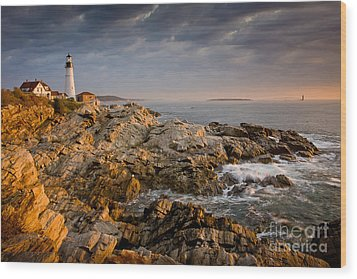 Light On Portland Head Wood Print by Susan Cole Kelly