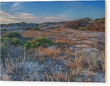 Light On The Dunes Wood Print by Bill Roberts