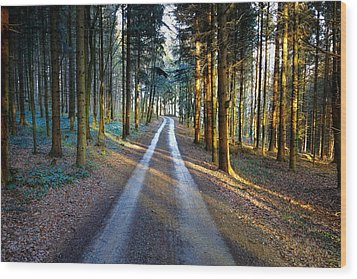 Light Path Crossing In The Woods Wood Print