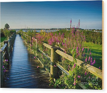 Wood Print featuring the photograph Lighthouse Path by Mark Miller