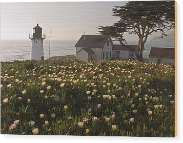 Lighthouse With A Blanket Of Wildflowers Wood Print by George Oze