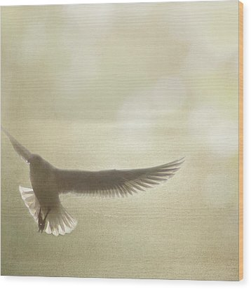 Wood Print featuring the photograph Lightness Of Being by Sally Banfill