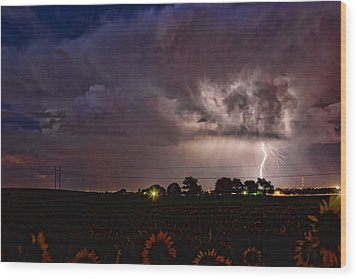 Lightning Stormy Weather Of Sunflowers Wood Print by James BO  Insogna