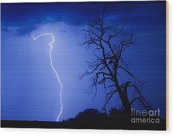 Lightning Tree Silhouette Wood Print by James BO  Insogna