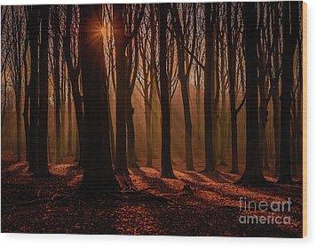 Lights And Shadows Wood Print