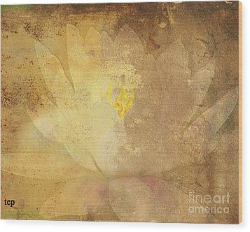 Wood Print featuring the photograph Lights On Lily by Traci Cottingham
