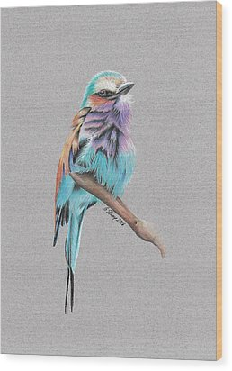 Lilac Breasted Roller Wood Print by Gary Stamp