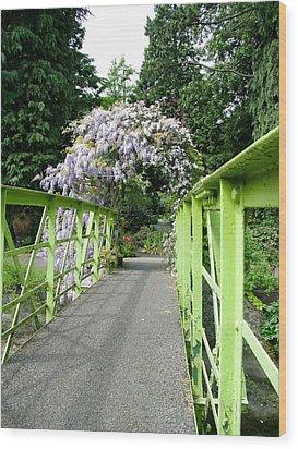 Lilac Colour  Crossing Wood Print by Martina Fagan