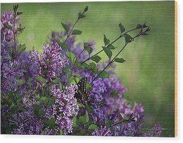 Lilac Enchantment Wood Print by Karen Casey-Smith