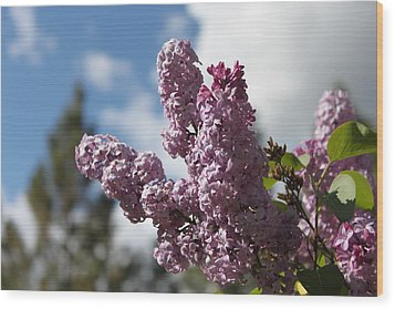 Wood Print featuring the photograph Lilacs 5547 by Antonio Romero