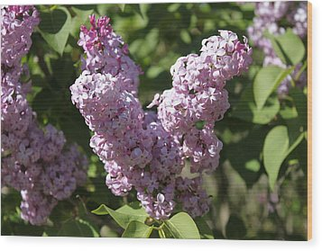Wood Print featuring the digital art Lilacs by Antonio Romero
