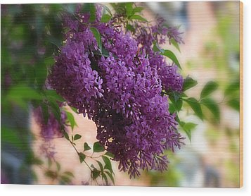 Lilacs Wood Print by Elaine Manley