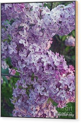 Lilacs Wood Print by Emily Kelley