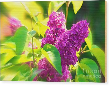 Wood Print featuring the photograph Lilacs by Susanne Van Hulst