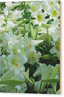Lilies 11 Wood Print by Anna Villarreal Garbis