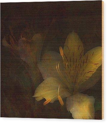Lilies II Wood Print by Bonnie Bruno