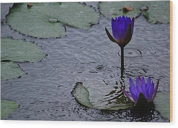 Wood Print featuring the photograph Lilies In The Rain by Amee Cave