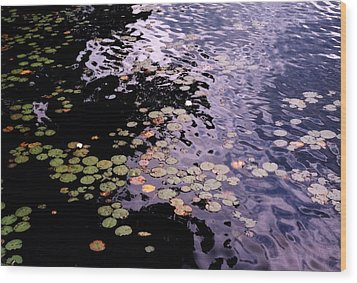 Wood Print featuring the photograph Lilies In The Water by Lyle Crump