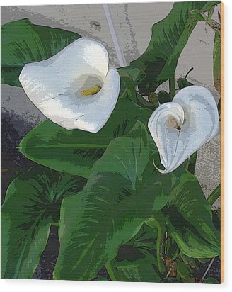 Lilies Of The Field Wood Print by Sally Stevens