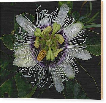 Lilikoi Passion Fruit Wood Print