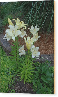 Wood Print featuring the photograph Lillies by Ferrel Cordle
