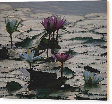 Lillies On The Lake Wood Print by Kimberly Camacho
