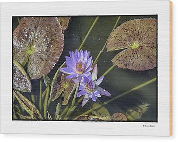 Lillies Wood Print by R Thomas Berner