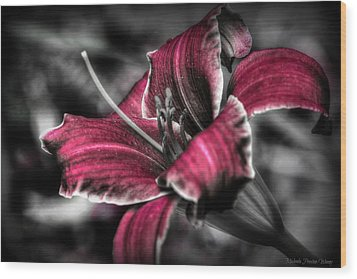 Wood Print featuring the photograph Lilly 3 by Michaela Preston