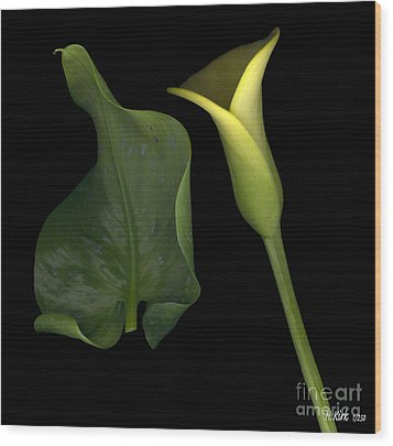 Lily And Leaf Number Two Wood Print by Heather Kirk