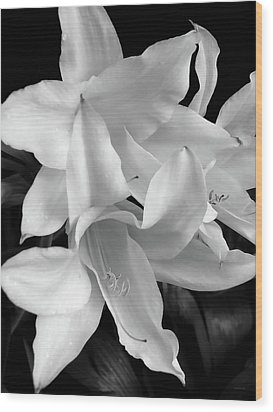 Lily Flowers Black And White Wood Print by Jennie Marie Schell