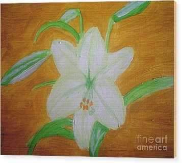 Lily Of Ecuador Wood Print by Josie Weir