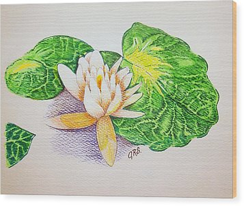 Lily Pad Wood Print by J R Seymour